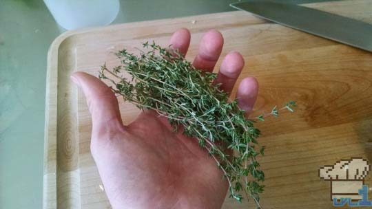 A handful of fresh thyme sprigs for the Simple Soup recipe from the Legend of Zelda Twilight Princess game series.