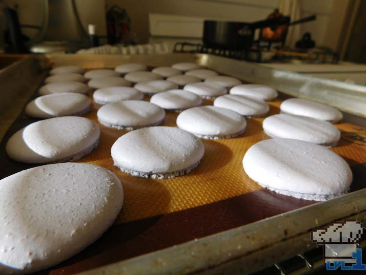 Baked macaron buns cooling off from the oven, on a baking tray.