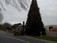 Weihnachtsbaum-Schiffswerft-2014-11
