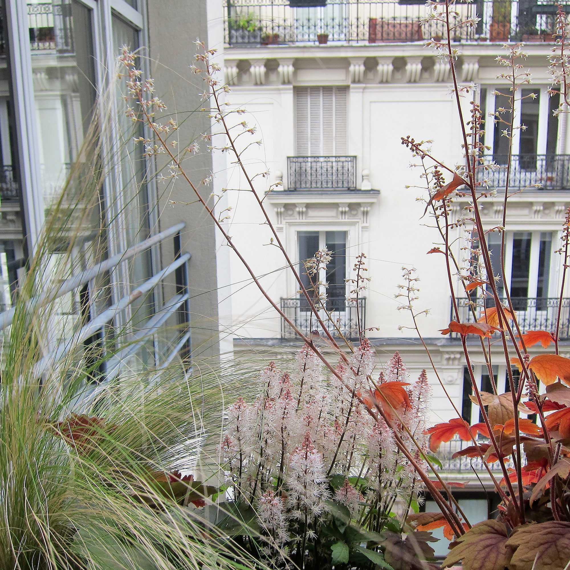 Rue Martel