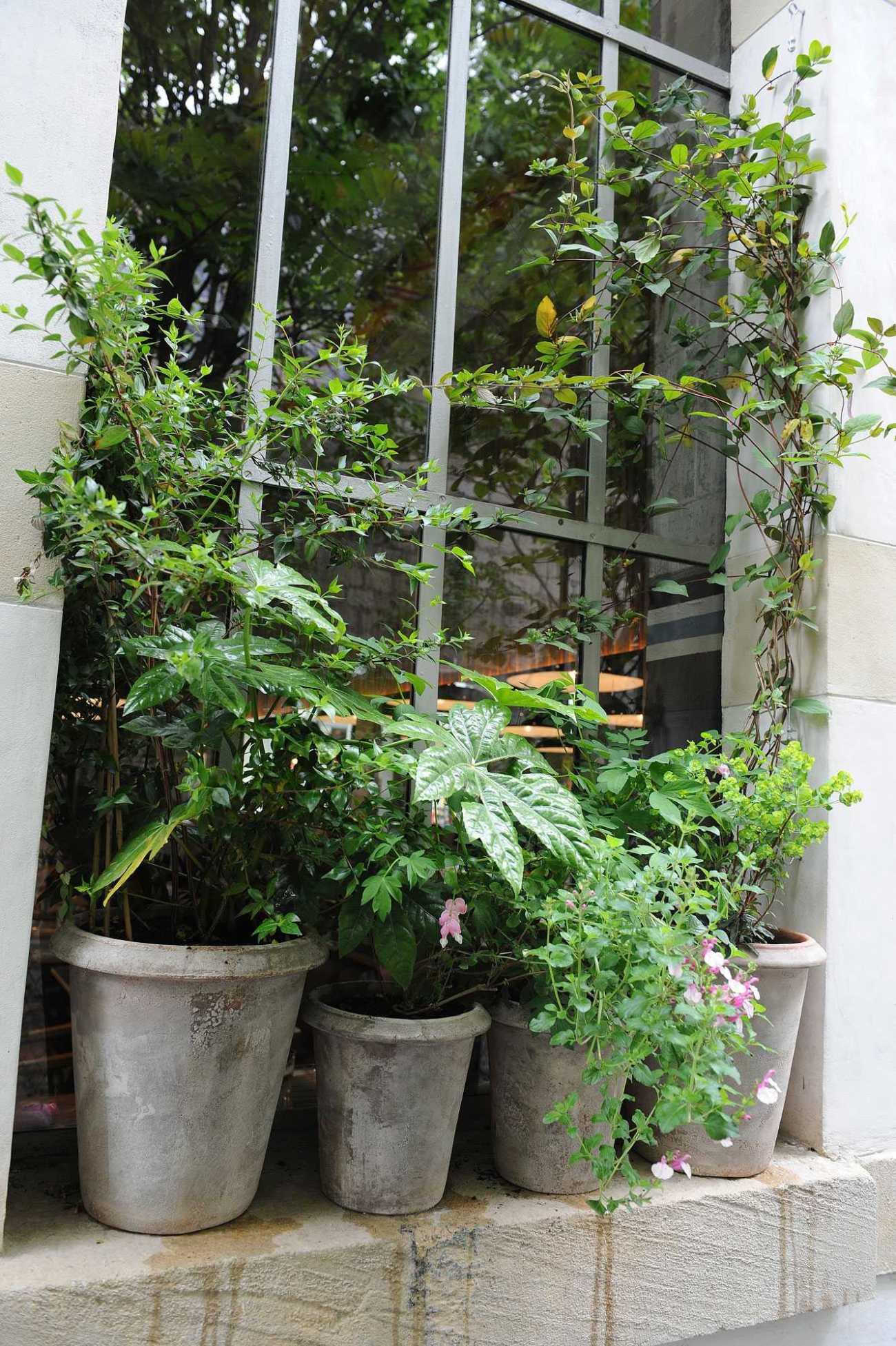 Grand Central. Centre culturel 104. Décoration végétale Le Vert à Soi