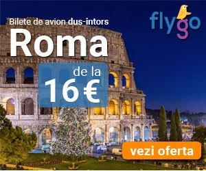 Bilete de avion ieftine – Cauta zboruri low cost | Fly Go