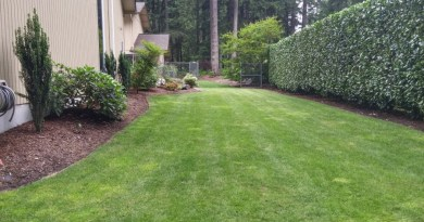 Winterizing your lawn in Port Orchard, Tacom and Gig Harbor in the cific Northwest