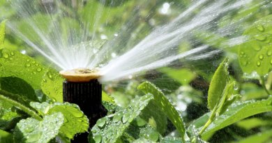 sprinklers sytems provide efficient watering for your yard