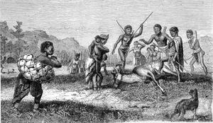 et af de første billeder fra Cape kolonien