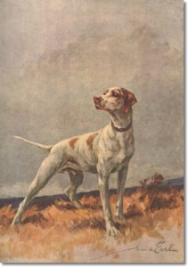 pointer-1-by-maud-earl