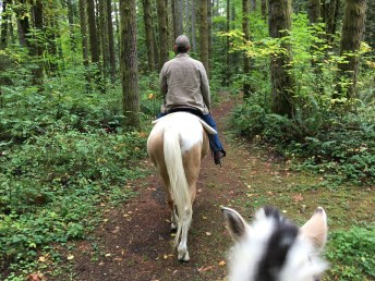 You can camp or get permission to park at Rainbow Falls but you must ride straight out of the park. There are no horse trails there. Photo credit: Kristina Lotz.