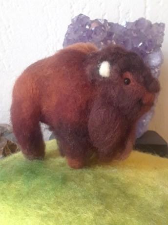 Buffalo by Amanda Hanson