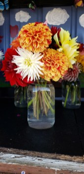 Jars of Flowers at Cyndle's Fresh Cut Flowers