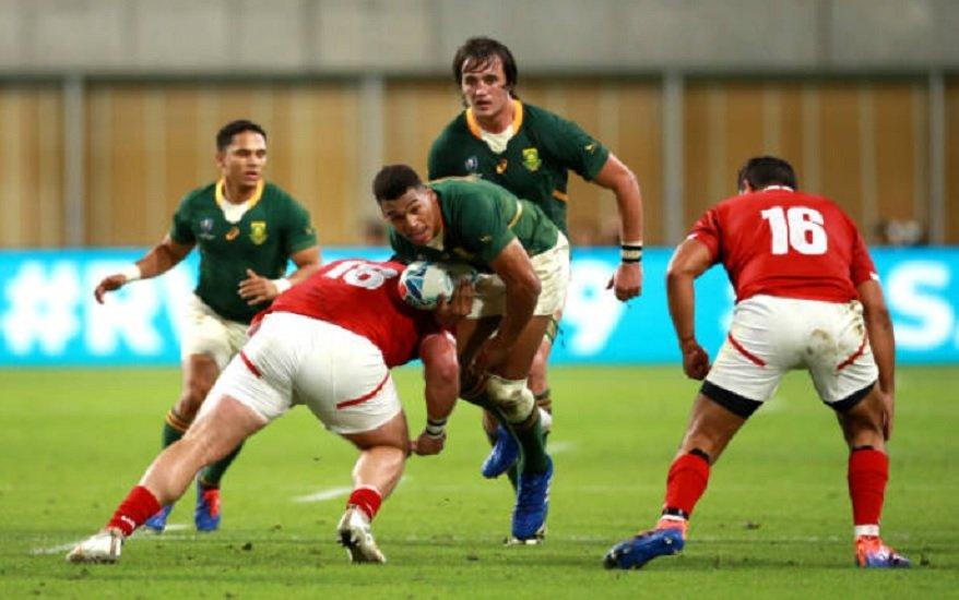l'afrique du sud écrase le canada rugby coupe du monde xv de départ 15