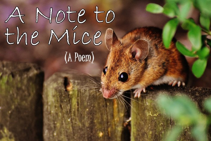 A Note to the Mice