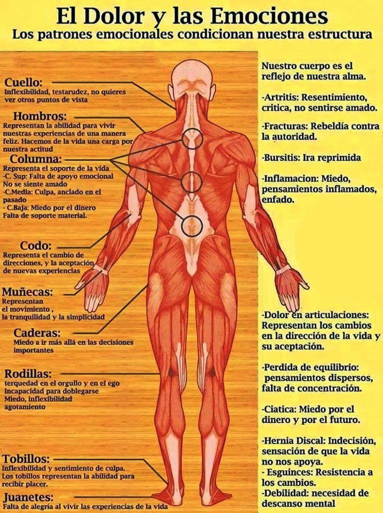El Significado Metafísico de los Dolores y Enfermedades