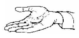 El Significado de los Gestos con las Manos (Lenguaje Corporal)