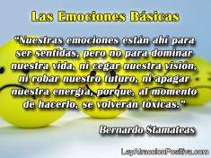 ¿Cuáles son las Emociones Básicas?