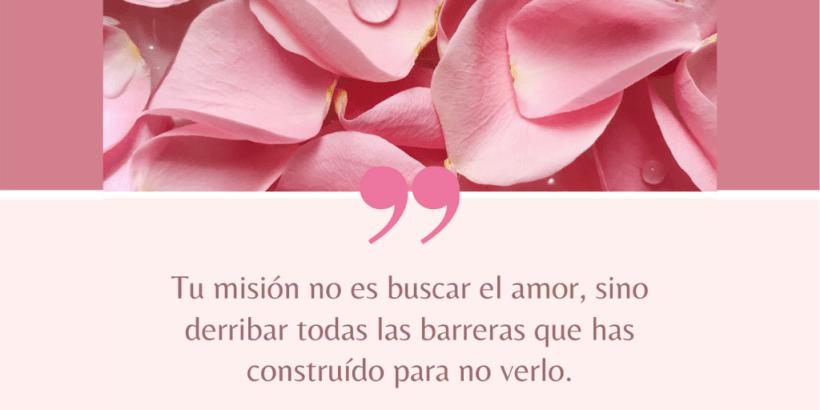 """""""Tu misión no es buscar el amor, sino derribar todas las barreras que has construido para no verlo."""" Rumi"""