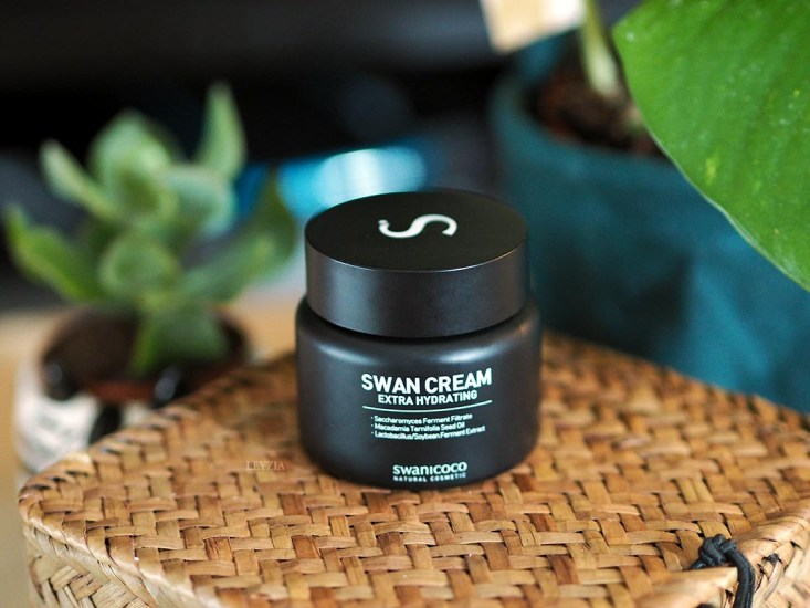 swan_cream_featured