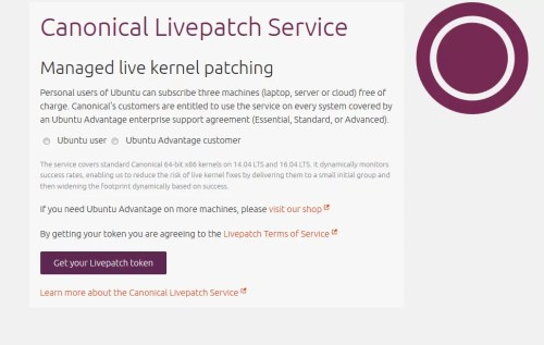 kernel livepatch