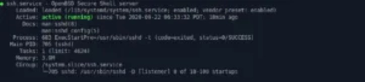 openssh-server service