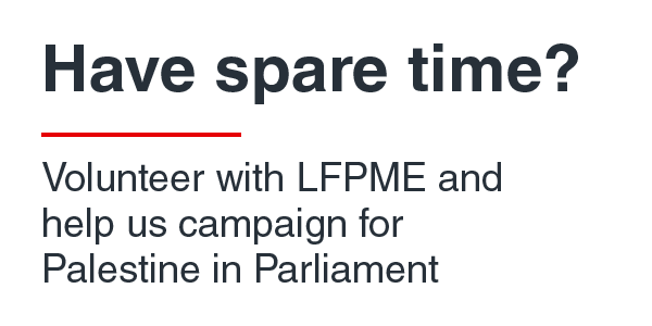 Volunteer for Palestine with LFPME