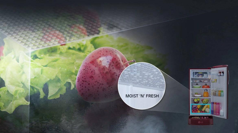 LG Single Door Refrigerator with Mosit N Fresh