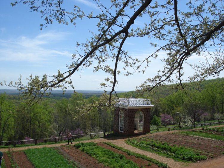 cupola and gardens - serve blog