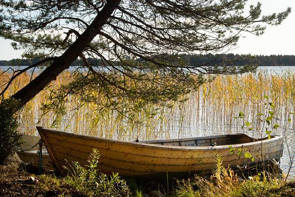 Höstlandskap med båt