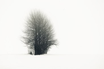 Dimma i Bälinge