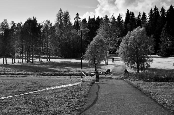 Mariehemsängarna, Umeå. Fotograf Lars-Göran Norlin