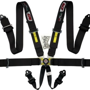 6 Point Harness
