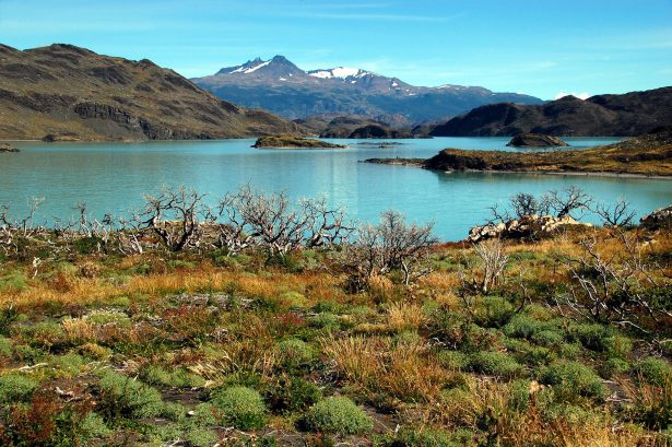 lac patagonie - CC Flikr Davide Zanchettin