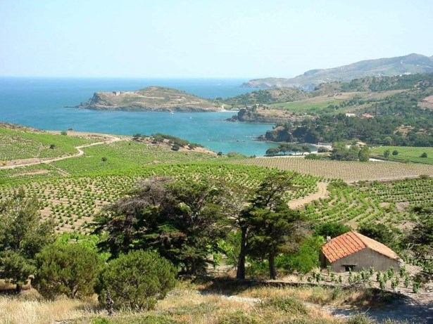 La côte Vermeille une beauté à couper le souffle - Roussillon Oenotourisme