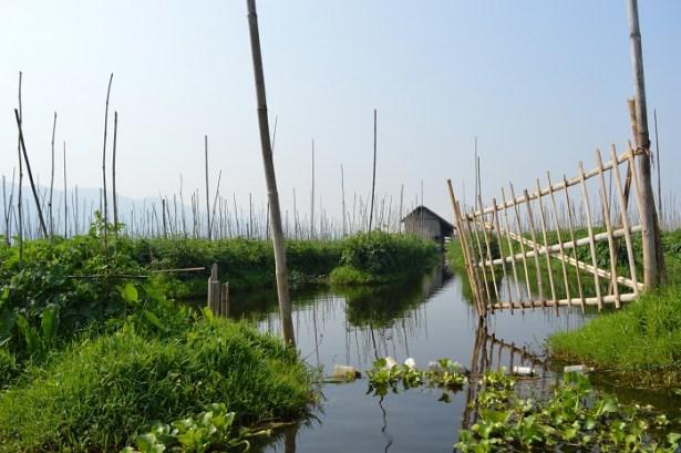 Jardin du Lac Inle, Birmanie - Crédit photo L'HommeTendance.fr