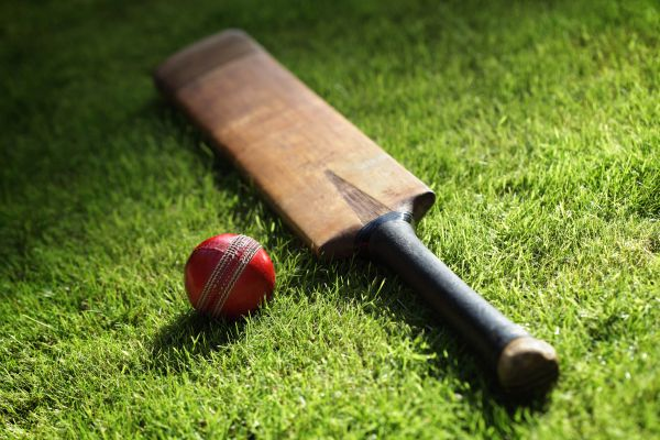 cricket bat ball
