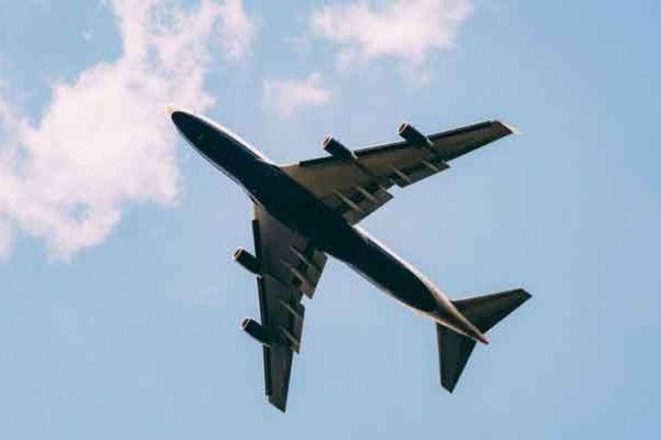 Pakistan halts flights