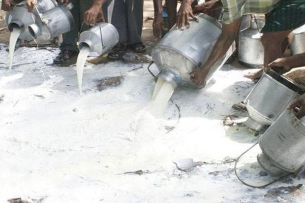 PFA disposes of tainted milk
