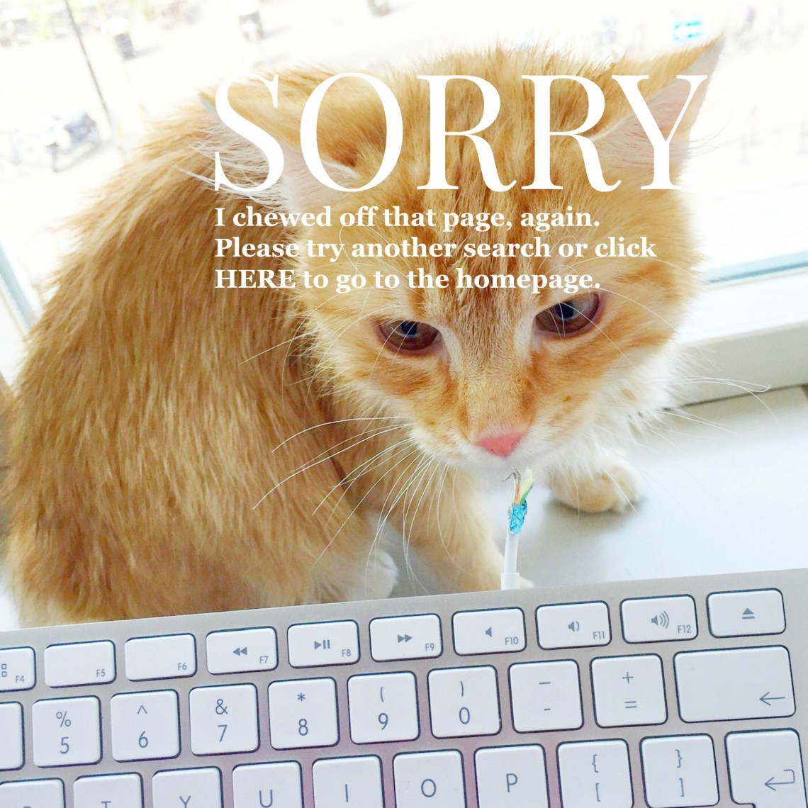 404 Page: Try another search or go to Lia Belle {int} homepage