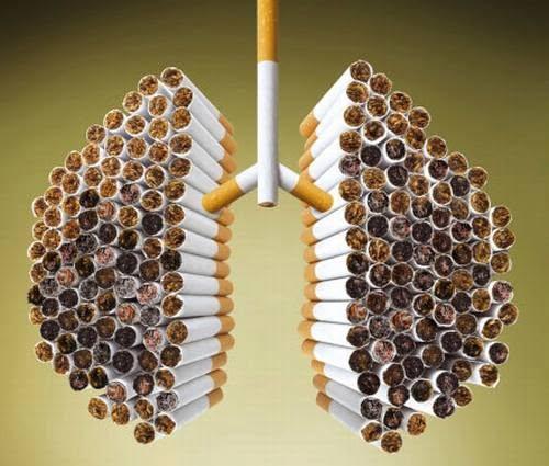 E-cig e polmone: le prove a sostegno di una riduzione del danno provocato dal fumo