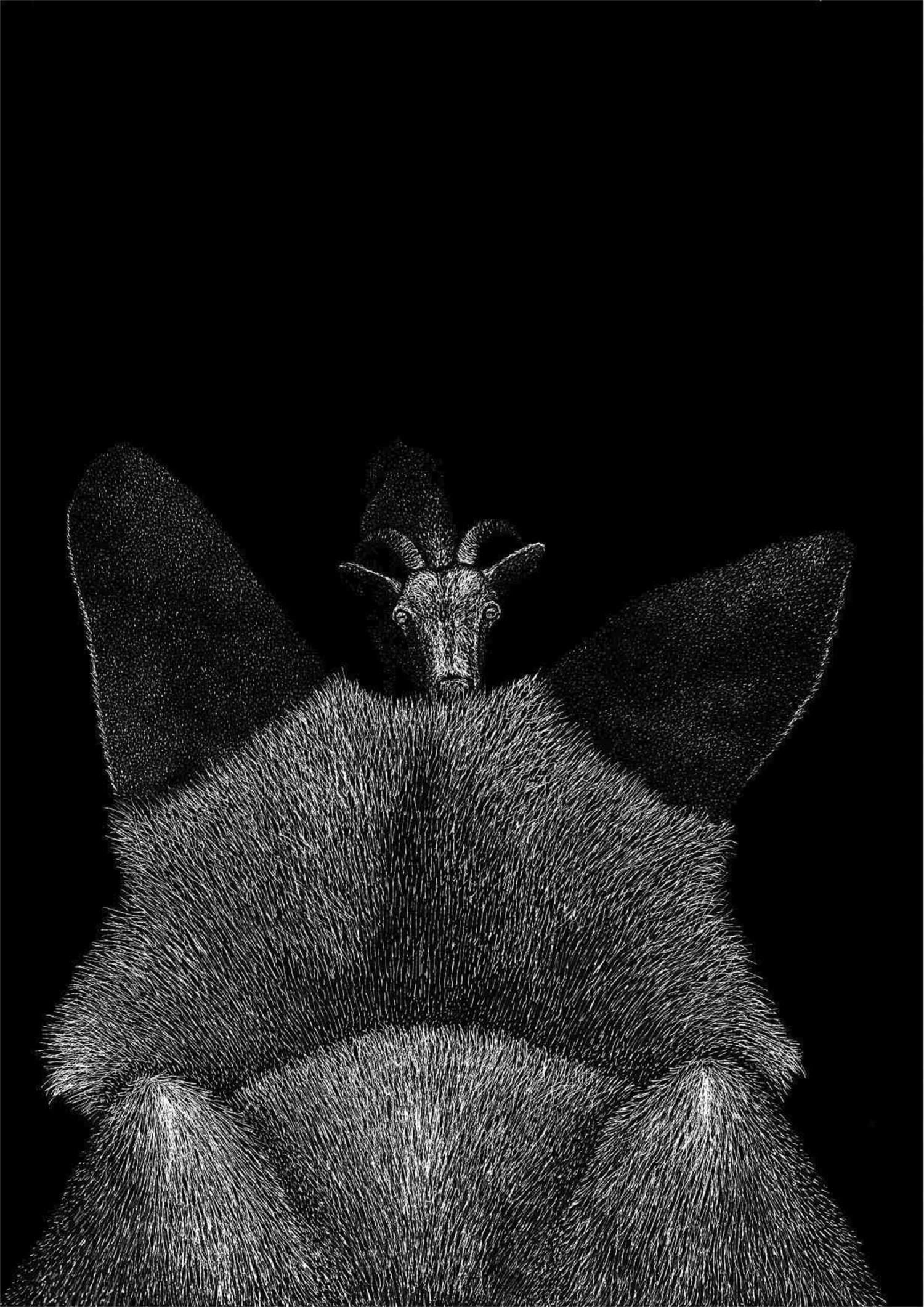 La volpe e il becco - Lia Mariani