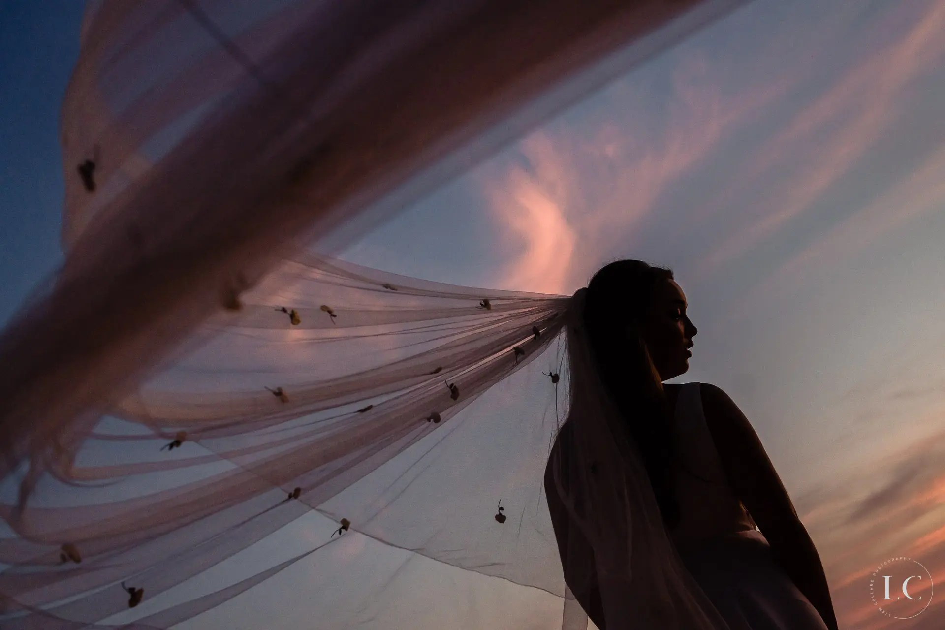 Bride veil in the wind