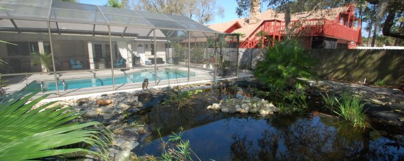 Just Listed: 3 bed 2 bath Pool Home with Koi Pond in Clearwater