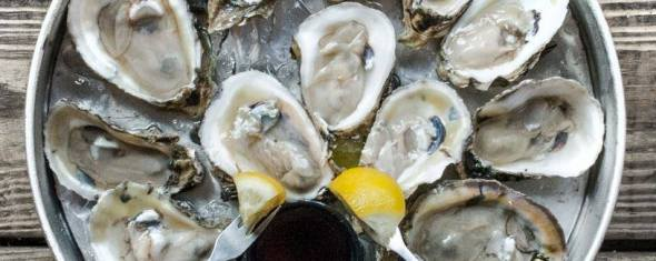 A Guide to Enjoying Oysters in St. Pete
