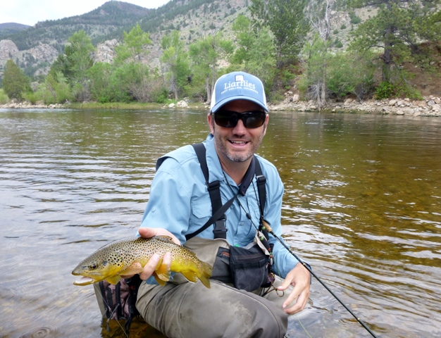 Brown Trout on the Cache La Poudre River