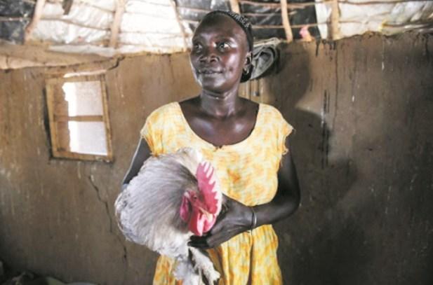 Au Sénégal, les femmes gagnent en autonomie grâce à l'agriculture