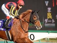 競馬で馬の名前を宣伝ツールとして利用してはいけない?珍名競走馬伝説。