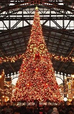 TDLのクリスマスツリーは有名ですよね