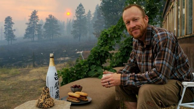 Twig's StressLess Series for Getting Through Wildfires and Other Natural Disasters