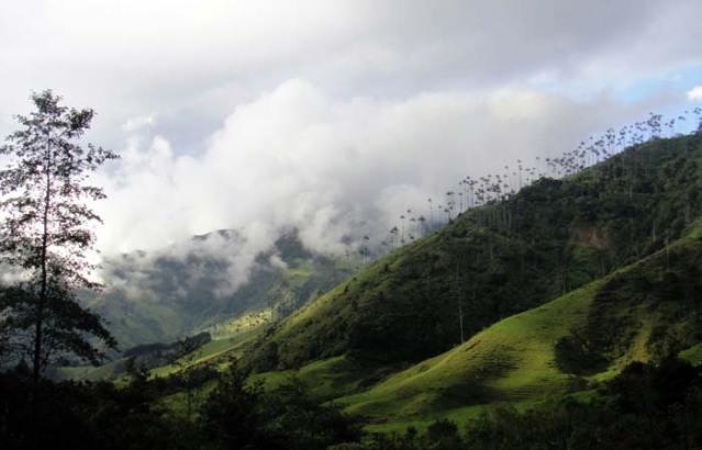 Veduta dall'alto del Parque National Natural Los Nevados