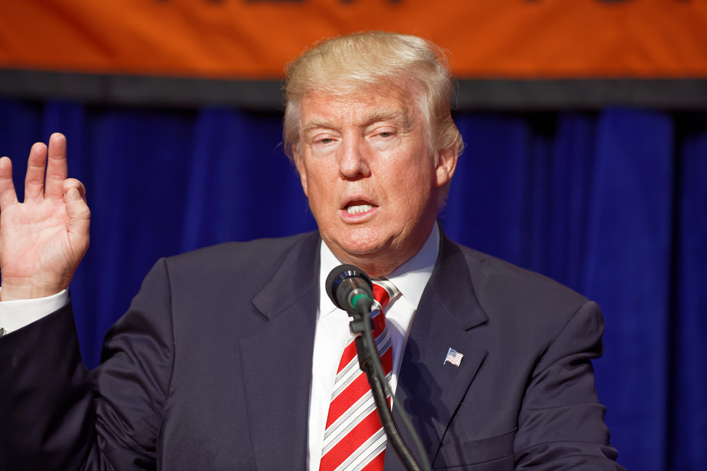 Donald Trump 2016 election photo