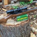 'Full-scale Constitutional Revolt' Against WA Gun Control?