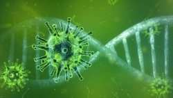 Coronavirus Prachatai flickr 16 9 ratio
